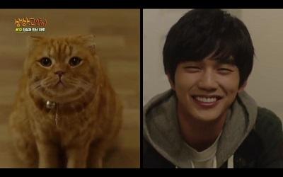 Imaginary Cat Korean Drama - Yoo Seung Ho