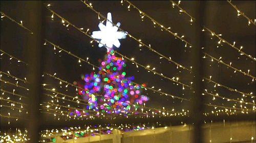 Oh My Venus - Merry Christmas