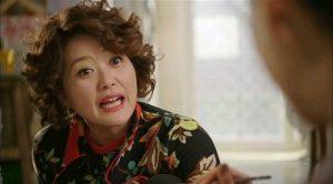 Modern Farmer Korean Drama - Oh Young Shil